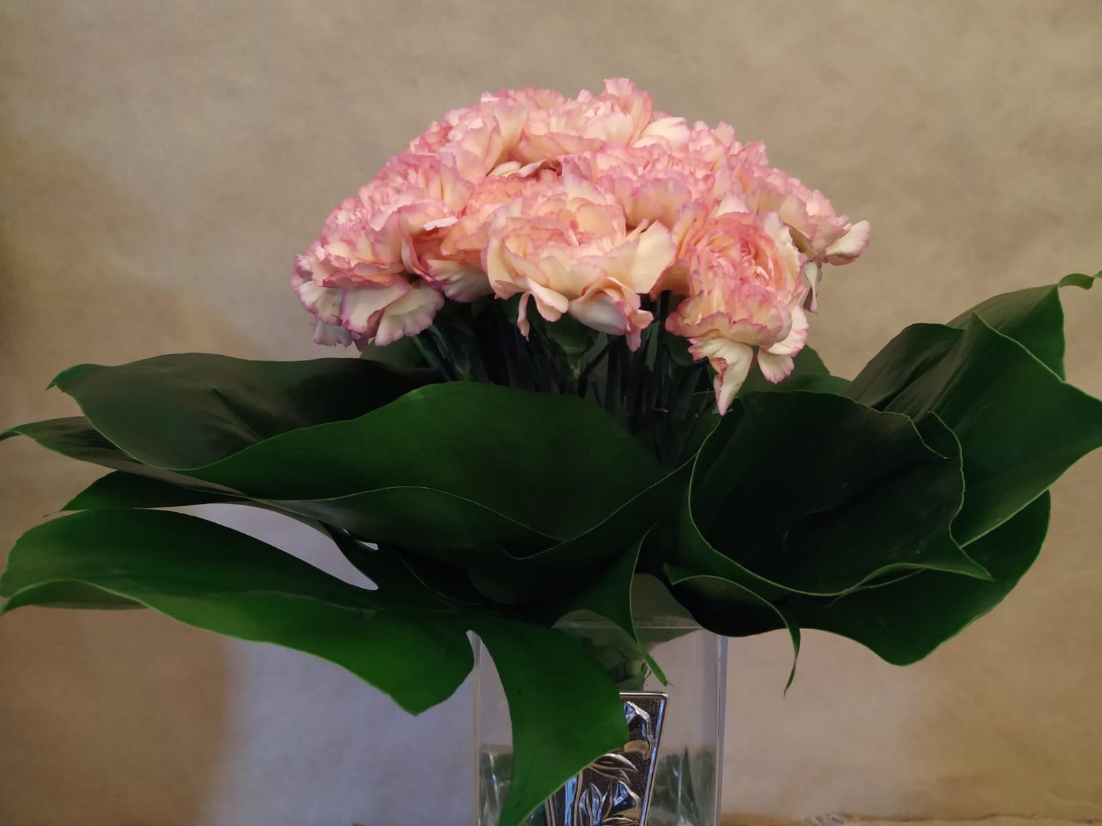 bouquet garofani