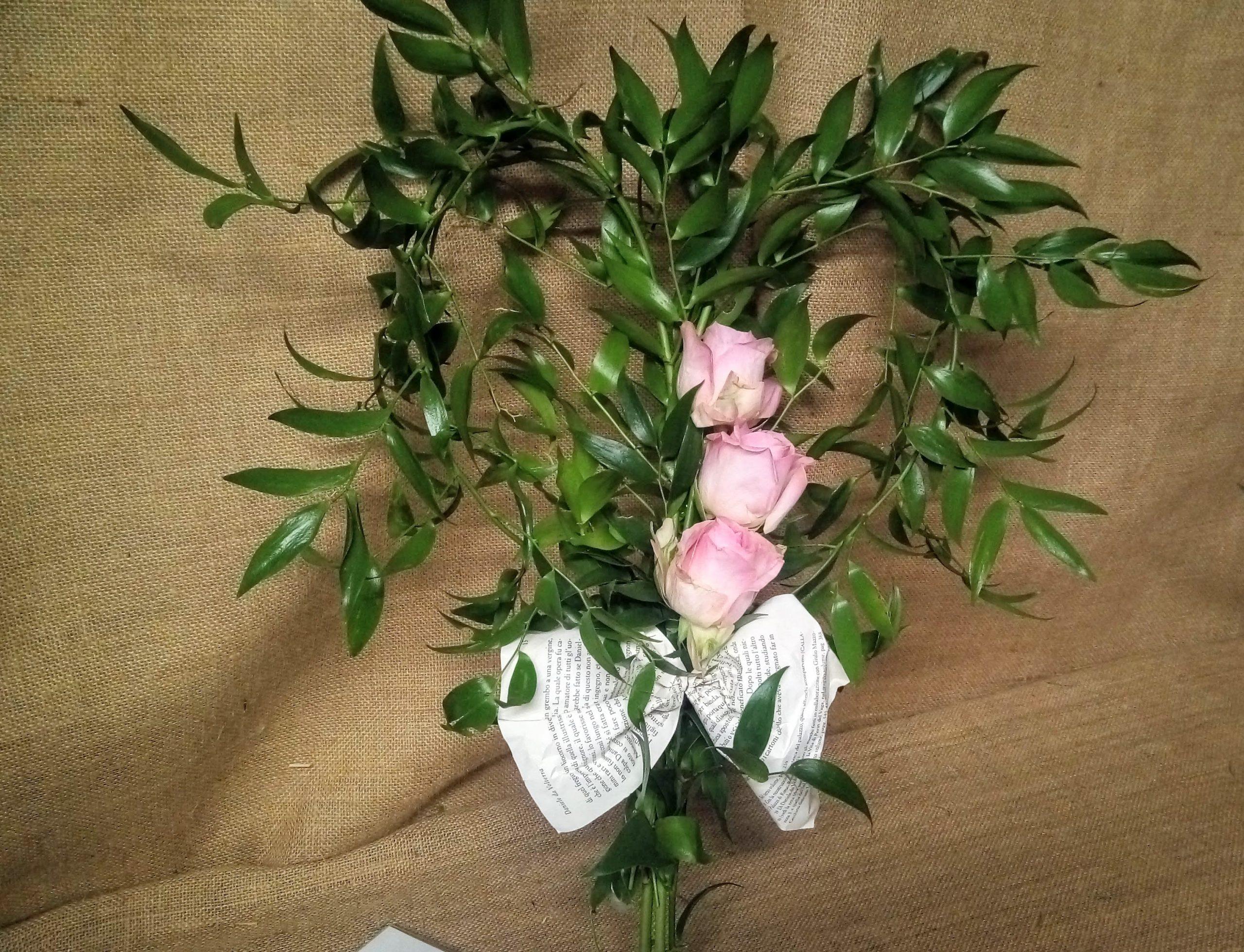 cuore ruscus rose