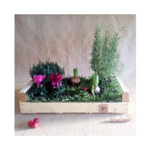 giardino in cassetta